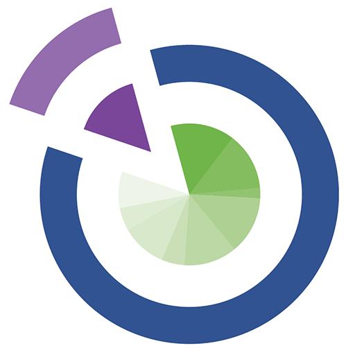 RBW Strategy logomark